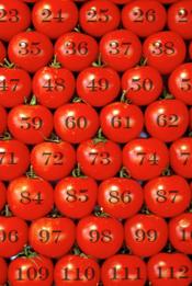 Tomato-Patch